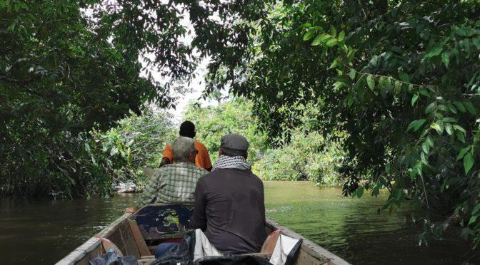 Tapanahony Suriname